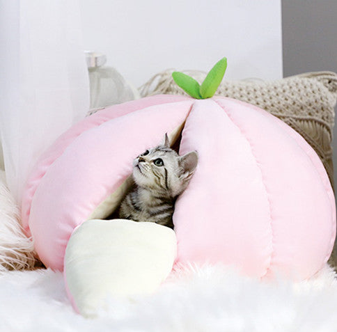 Pumpkin Cushion Soft Indoor Pet Bed For Small Medium Cats - Pawsmeme.com