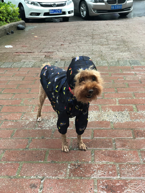 Cartoon Print Navy Hoodie Raincoat Leg Protection For Small Medium Large Dogs - Pawsmeme.com