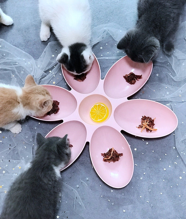 Flower Petal Multiple Pets Designer Pet Feeding Bowl For Small Medium Cats - Pawsmeme.com