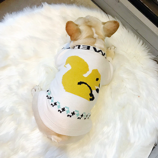 Loewe Style White Knit Sweater Designer Costume For Small Medium Dogs - Pawsmeme.com