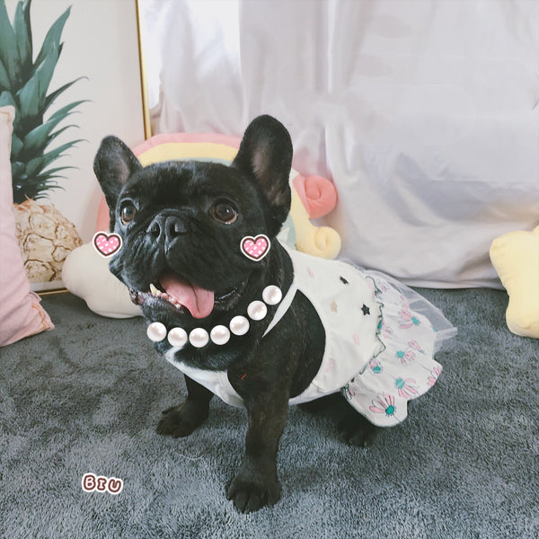 Cute White Floral Cotton Shirt Dress Costume For Small Medium Dogs - Pawsmeme.com