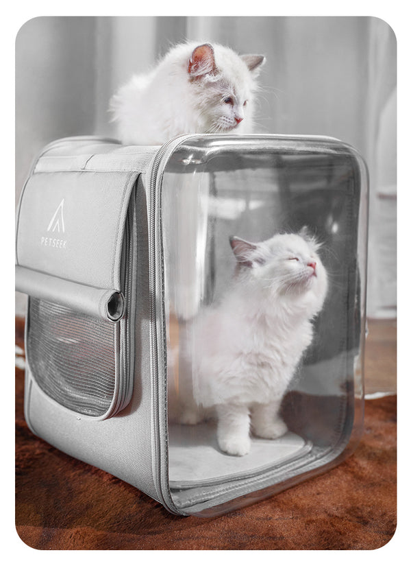 Soft Box Breathable Mesh Waterproof Transparent Designer Portable Hard Pet Traveler Carrier Backpack For Small Medium Cats - Pawsmeme