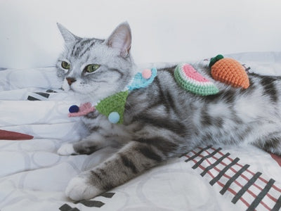 Cute Hats Knit Handmade Adjustable Designer Pet Collar Costume Scarf Bandanas For Small Medium Cats - Pawsmeme.com