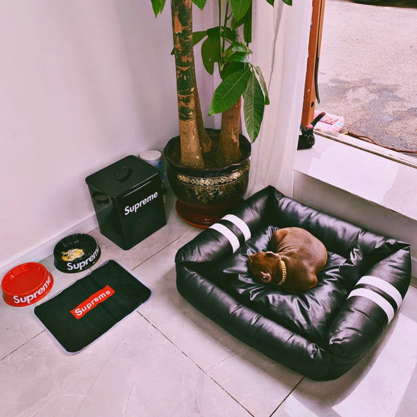 Street Fashion Black Leather Easy Clean Cushion Indoor Pet Bed For Small Medium Dogs - Pawsmeme
