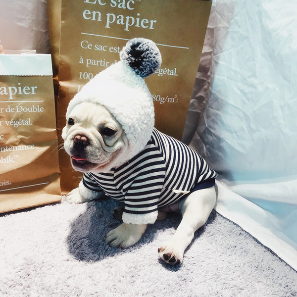 Stripe Cotton Warm Fall Winter Sweater Designer Costume For Small Medium Dogs - Pawsmeme.com