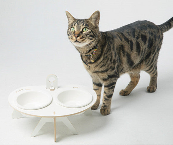 Modern Ceramic Raised Elevated Designer Pet Feeding Bowl For Small Medium Cats - Pawsmeme