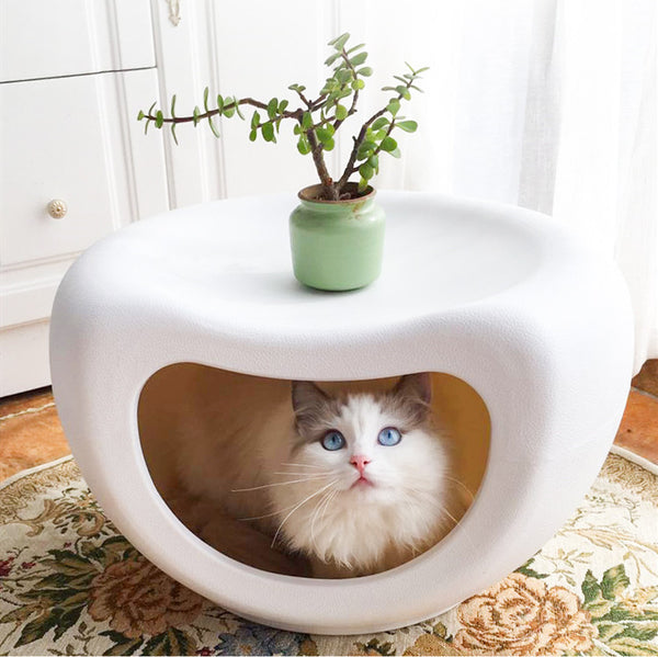 Modern White Cushion Pet Cave Bed Home Decor Easy Clean For Small Medium Cats - Pawsmeme.com