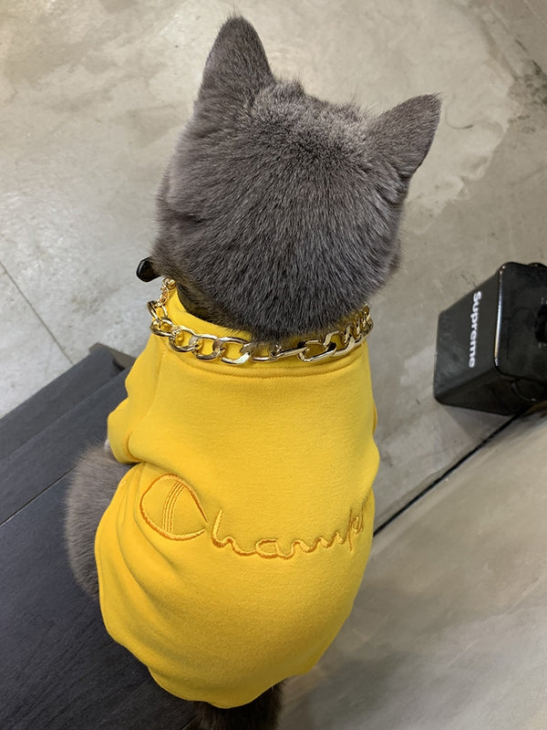 Champion Style Yellow Street Woolen Sweatshirt Costume For Small Medium Cats - Pawsmeme.com