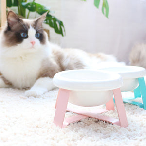 Candy Color Ceramic Raised Stand Easy Clean Designer Pet Feeding Bowl For Small Medium Cats - Pawsmeme.com