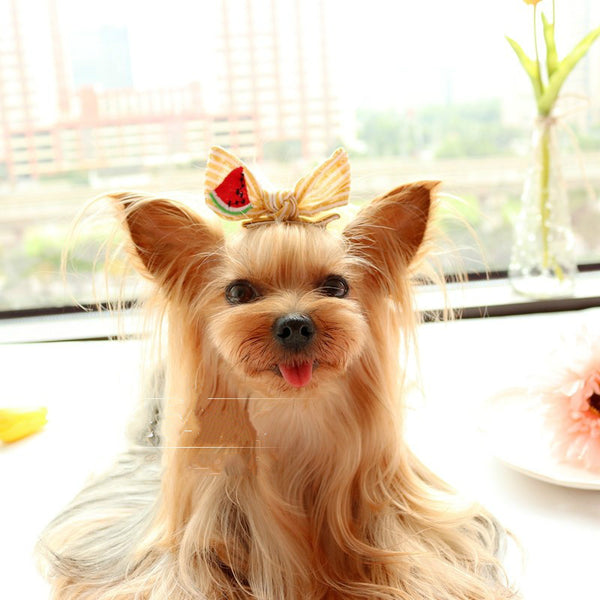 Designer Handmade Bowtie Hair Clips Accessories for Long Hair Dogs - Pawsmeme.com