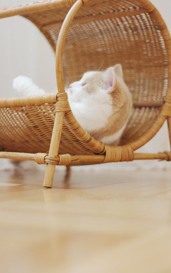Basket Cooling Home Décor Cushion Weave Braid Designer Indoor Cave Pet Bed House For Small Medium Cats - Pawsmeme.com