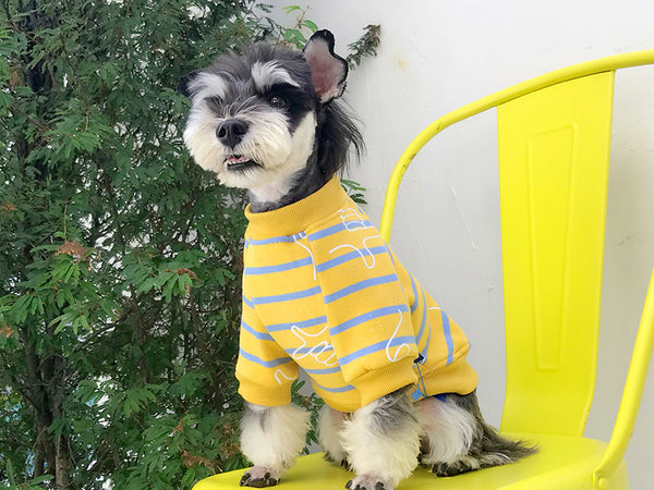 Yellow Glitter Stripe Street Fall Winter Sweater Hoodie Costume For Small Medium Dogs - Pawsmeme.com
