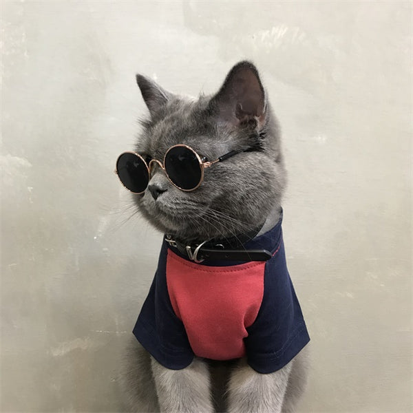 Burberry Style Big B Pink Blue Summer Breathable T-shirt Costume For Small Medium Cats - Pawsmeme.com