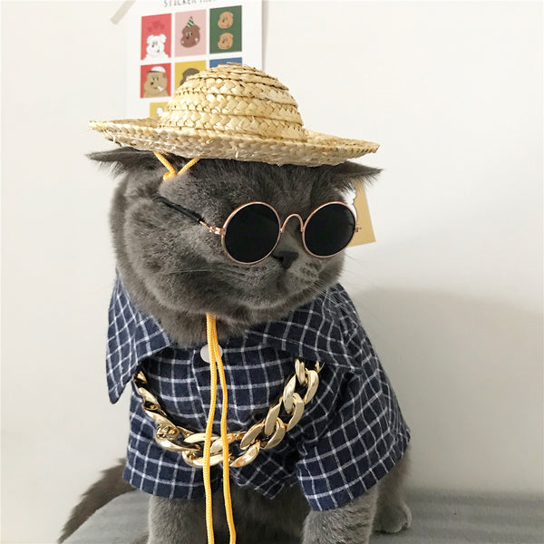 Retro Sunglasses Golden Necklace & Woven Hat Accessories Set for Small Medium Cats - Pawsmeme.com