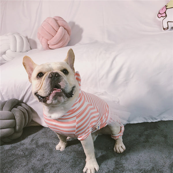 Pink Stripe Princess Lace Shirt Dress Costume For Small Medium Dogs - Pawsmeme.com