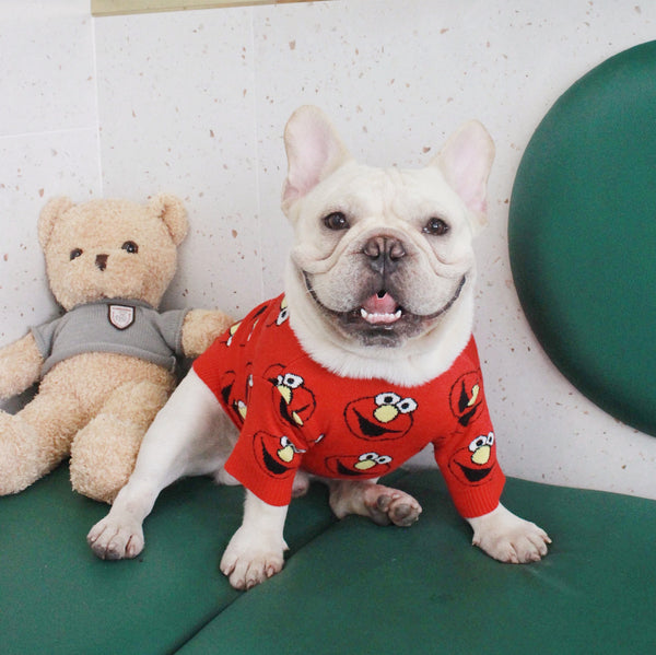 Sesame Street Red Knit Sweater Designer Costume For Small Medium Large Dogs - Pawsmeme.com