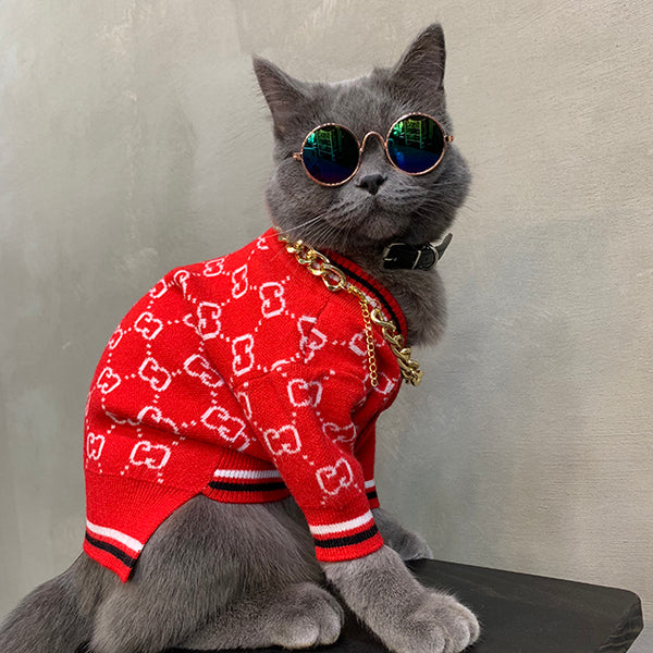 Gucci Style Red Button Street Knit Sweater Costume For Small Medium Cats - Pawsmeme.com