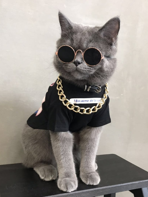 Street Style Black Donuts Cotton T-shirt With Gold Chain Costume For Small Medium Cats - Pawsmeme