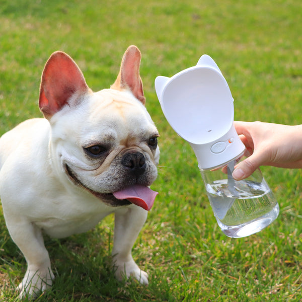 Portable Water Bottle Dispenser For Wide Face Small Medium Dogs - Pawsmeme.com