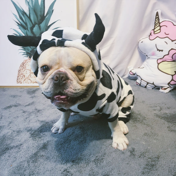 Milk Cow Pattern Sweater Warm Woolen Costume For Small Medium Dogs - Pawsmeme.com