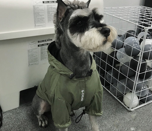 Dark Green Hoodie Raincoat Leg Protection Street Fashion For Small Medium Dogs - Pawsmeme