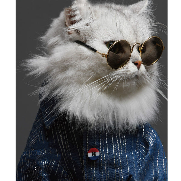 Vintage Designer Non-slip Pet Accessories Glasses for Small Medium Cats - Pawsmeme.com
