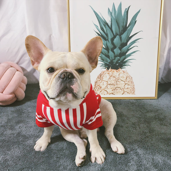 Popcorn Cute Red Stripe Cotton T-shirt Costume For Small Medium Dogs - Pawsmeme