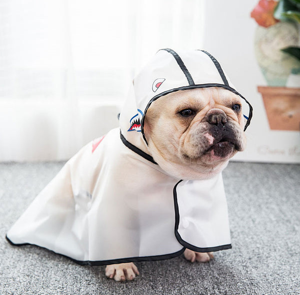 Bape Style Monster Clear Hoodie Raincoat Button Easy Wear For Small Medium Dogs - Pawsmeme.com