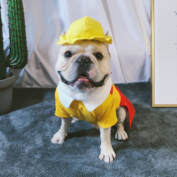 Broke Girls Style Waitress Diner Cotton Dress With Hat Costume For Small Medium Dogs - Pawsmeme.com