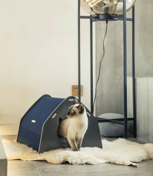 Cozy Modern Cave Indoor Designer Pet House For Small Medium Cats - Pawsmeme.com