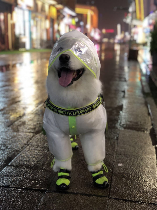 Clear Elastic Button Outdoor Raincoats Leg Protection For Large Dogs - Pawsmeme.com
