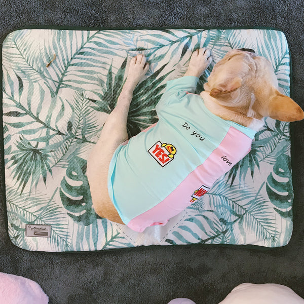 Cute Yes Or No Summer Thin Breathable Shirt Costume For Small Medium Dogs - Pawsmeme.com