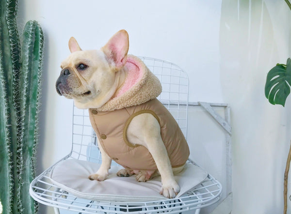Extra Warm Thick Fall Winter Sweater Vest Costume For Small Medium Dogs - Pawsmeme.com