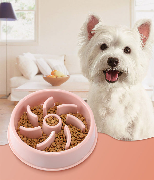 Candy Color Wave Interactive Slow Eating Anti-Gulping Designer Pet Feeding Bowl For Small Medium Dogs & Cats - Pawsmeme