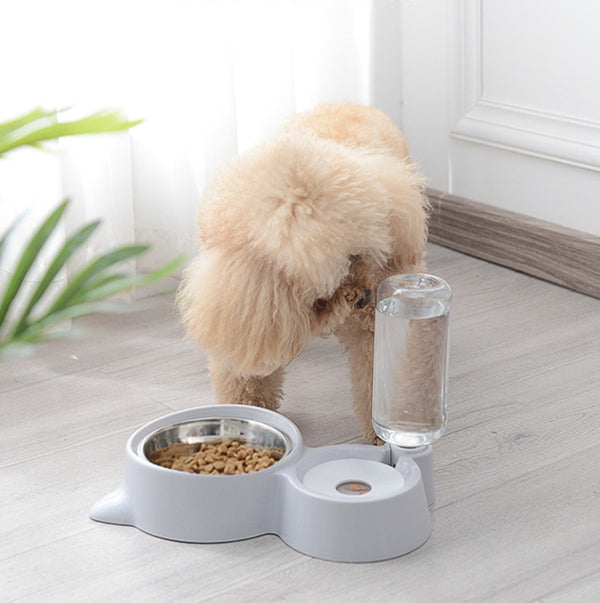 Two In One Auto-fill No Spill Water Bowl & Stainless Steel Feeding Bowl For Small Medium Dogs - Pawsmeme.com