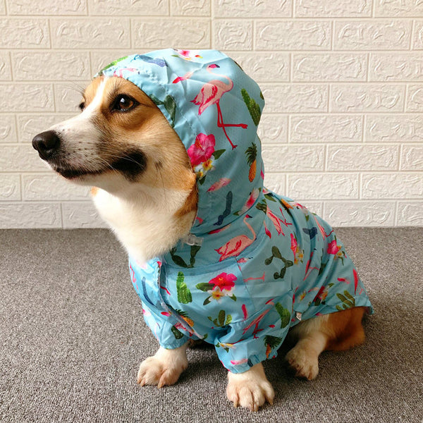 Blue Flamingo Hoodie Raincoat Waterproof Easy Wear For Small Medium Dogs - Pawsmeme.com
