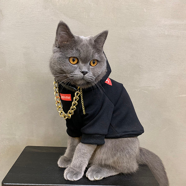 Supreme Style Black Woolen Sweatshirt Jacket Costume For Small Medium Cats - Pawsmeme.com