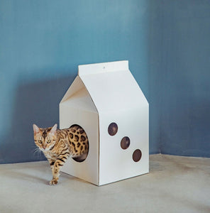 Milk Bottle Paper Scracher Scratch Board Pet House For Small Medium Cats - Pawsmeme.com