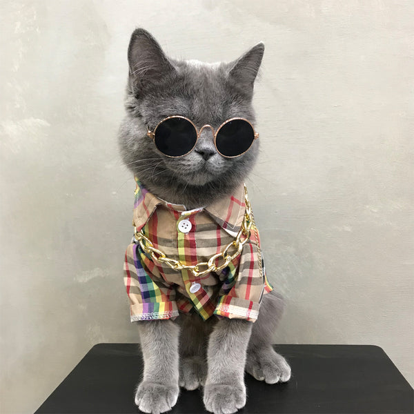 Burberry Style Plaid Rainbow Summer Shirt Costume For Small Medium Cats - Pawsmeme