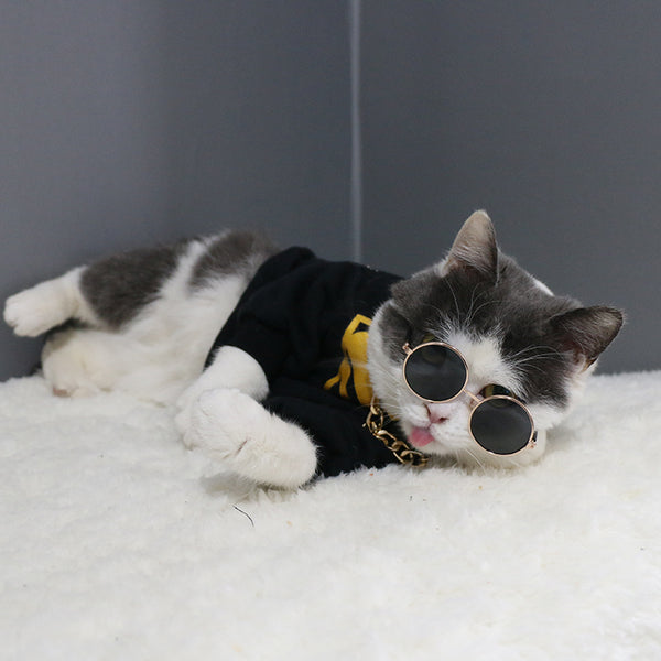 Vintage Sunglasses Metal Round Pet Glasses for Small Medium Cats - Pawsmeme.com