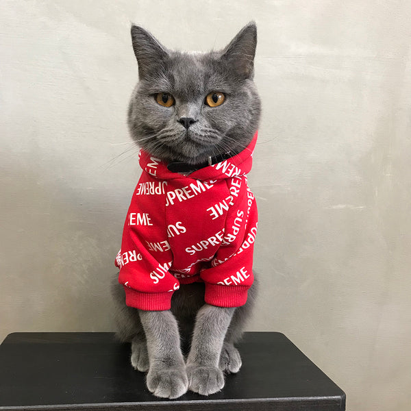 Supreme Style Red Woolen Sweatshirt Costume For Small Medium Cats - Pawsmeme.com