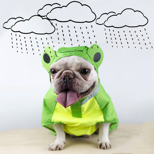 Green Frog Cute Raincoat Easy Wear Full Protection For Small Medium Dogs - Pawsmeme