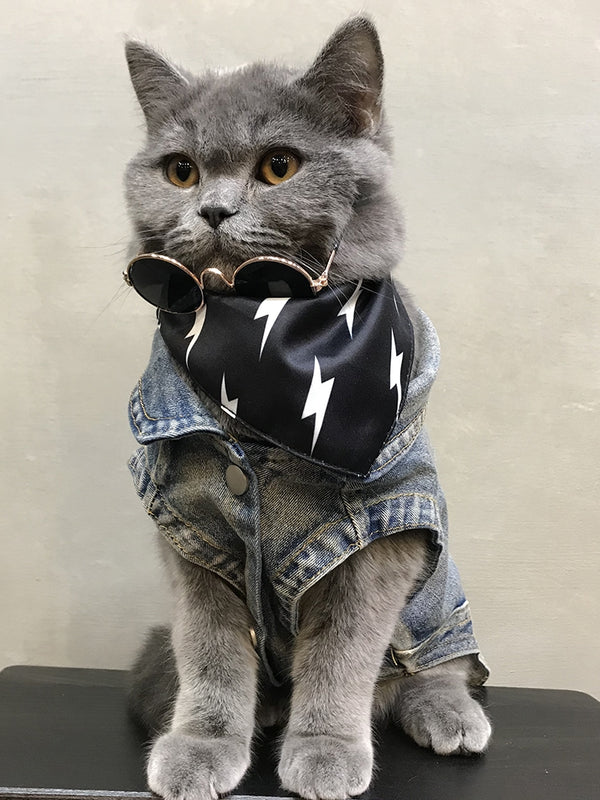 Off White Style Jeans Street Vest Costume For Small Medium Cats - Pawsmeme