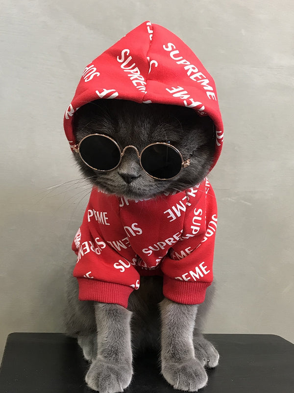 Supreme Style Red Woolen Sweatshirt Costume For Small Medium Cats - Pawsmeme