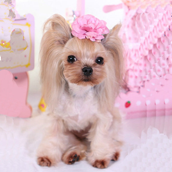 Camellia Flower Hair Clips Hair Accessories for Long Hair Dogs - Pawsmeme.com