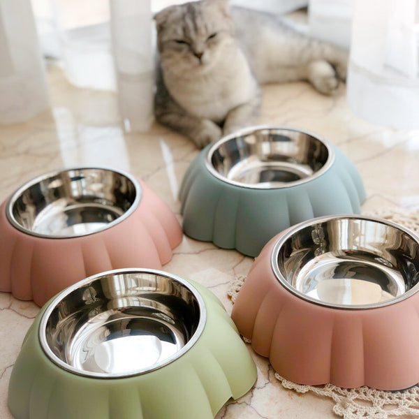 MORE COLORS Shell Stainless Steel Easy Clean Designer Pet Feeding Bowl For Small Medium Cats - Pawsmeme