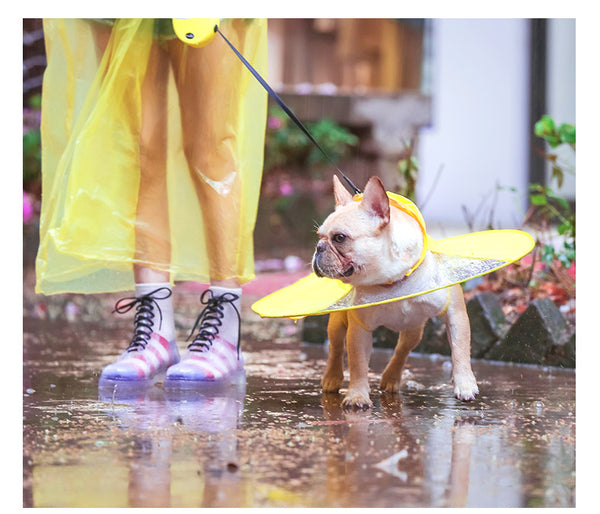 UFO Flying Raincoat Waterproof Shield Easy Wear For Small Medium Dogs - Pawsmeme.com