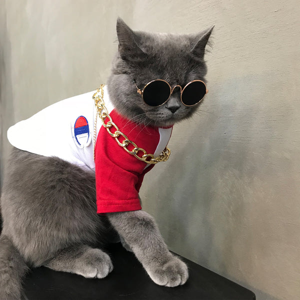 Champion Style Summer Lightweight Breathable T-shirt Costume For Small Medium Cats - Pawsmeme