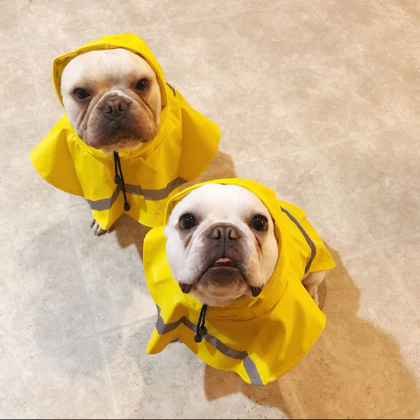360 Protection Raincoat Reflective Stripe Easy Wear For Small Medium Large Dogs - Pawsmeme.com