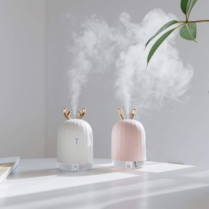 Cute Air Humidifier